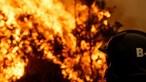 Cinquenta municípios do interior Norte e Centro e do Algarve em risco máximo de incêndio