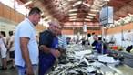 Peixe vendido no Algarve rende 33 milhões de euros