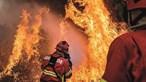 Mais de 60 concelhos do interior Norte e Centro e do Algarve em risco máximo de incêndio